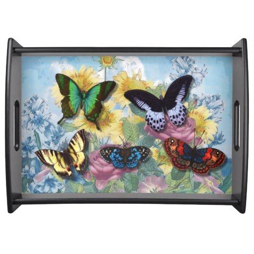 """Plateau de portion de """"beaux papillons"""" de collage"""