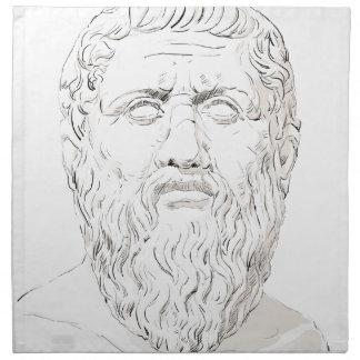 Plato Napkin