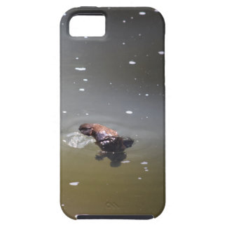 PLATPUS EUNGELLA NATIONAL PARK AUSTRALIA iPhone 5 CASE