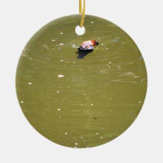 PLATYPUS DIVING IN WATER EUNGELLA AUSTRALIA CERAMIC ORNAMENT