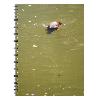 PLATYPUS DIVING IN WATER EUNGELLA AUSTRALIA SPIRAL NOTEBOOK