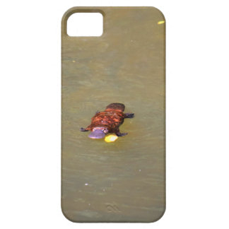 PLATYPUS EUNGELLA NATIONAL PARK AUSTRALIA CASE FOR THE iPhone 5