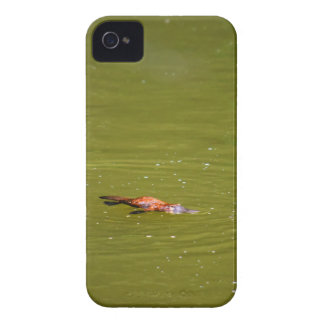 PLATYPUS EUNGELLA NATIONAL PARK AUSTRALIA Case-Mate iPhone 4 CASES