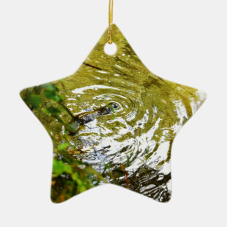 PLATYPUS EUNGELLA NATIONAL PARK AUSTRALIA CERAMIC STAR ORNAMENT