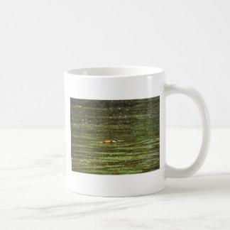 PLATYPUS EUNGELLA NATIONAL PARK AUSTRALIA COFFEE MUG