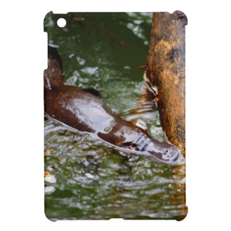 PLATYPUS EUNGELLA NATIONAL PARK AUSTRALIA iPad MINI CASES