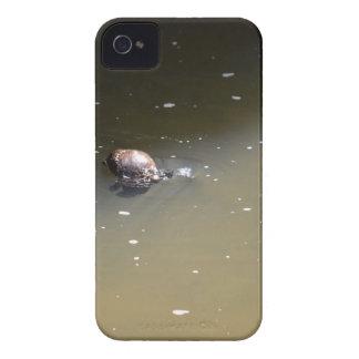 PLATYPUS EUNGELLA NATIONAL PARK AUSTRALIA iPhone 4 CASE