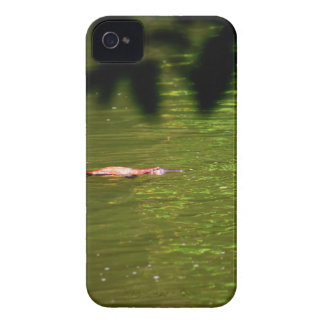 PLATYPUS EUNGELLA NATIONAL PARK AUSTRALIA iPhone 4 Case-Mate CASES