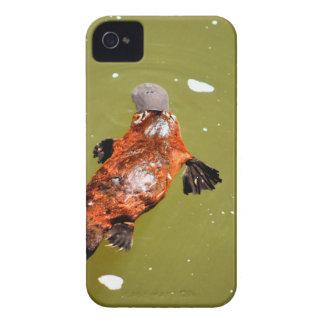 PLATYPUS EUNGELLA NATIONAL PARK AUSTRALIA iPhone 4 COVER