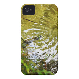 PLATYPUS EUNGELLA NATIONAL PARK AUSTRALIA iPhone 4 COVER