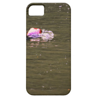PLATYPUS EUNGELLA NATIONAL PARK AUSTRALIA iPhone 5 CASES