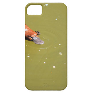 PLATYPUS EUNGELLA NATIONAL PARK AUSTRALIA iPhone 5 COVER