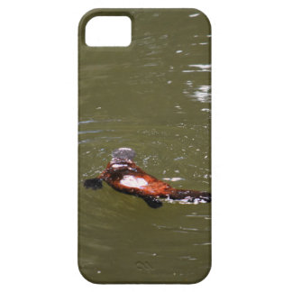 PLATYPUS EUNGELLA NATIONAL PARK AUSTRALIA iPhone 5 COVERS