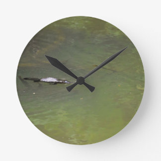 PLATYPUS EUNGELLA NATIONAL PARK AUSTRALIA WALL CLOCKS