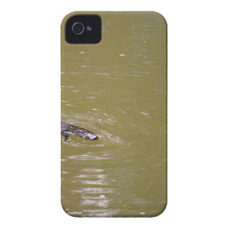 PLATYPUS EUNGELLA NATIONAL PARK QUEENSLAND AUSTRAL iPhone 4 CASES