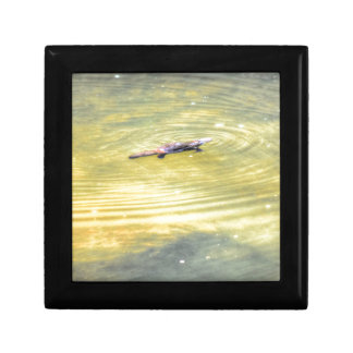 PLATYPUS IN WATER AUSTRALIA ART EFFECTS GIFT BOXES