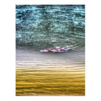 PLATYPUS IN WATER AUSTRALIA ART EFFECTS POSTCARD