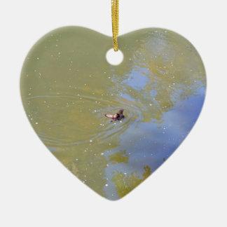 PLATYPUS IN WATER EUNGELLA NATIONAL PARK AUSTRALIA CERAMIC ORNAMENT