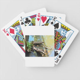 PLATYPUS IN WTAER EUNGELLA NATIONAL PARK AUSTRALIA BICYCLE PLAYING CARDS
