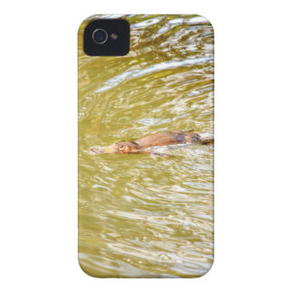 PLATYPUS IN WTAER EUNGELLA NATIONAL PARK AUSTRALIA iPhone 4 Case-Mate CASE