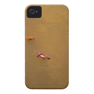 PLATYPUS & TURTLE EUNGELLA NATIONAL PARK AUSTRALIA iPhone 4 COVER