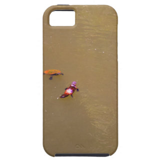 PLATYPUS & TURTLE EUNGELLA NATIONAL PARK AUSTRALIA iPhone 5 CASE