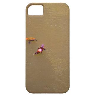 PLATYPUS & TURTLE EUNGELLA NATIONAL PARK AUSTRALIA iPhone 5 CASES