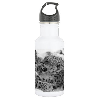 Play-Fighting Snow Leopard Brothers 532 Ml Water Bottle