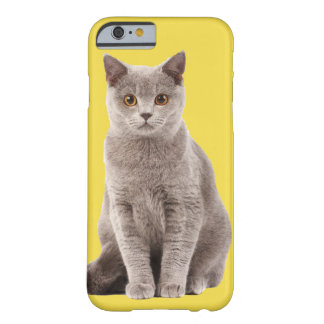 Play with me? Cute cat Barely There iPhone 6 Case