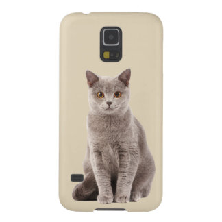 Play with me? Cute cat Cases For Galaxy S5