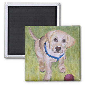 Play With Me. Yellow Labrador Retriever Magnent Square Magnet
