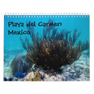 Playa del Carmen, Mexico Calendar