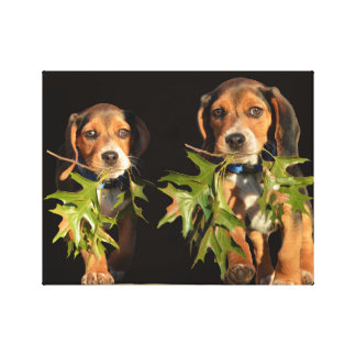 Playful Beagle Brothers Puppies Canvas Print