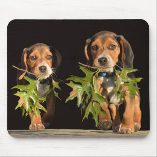 Playful Beagle Brothers Puppies Mouse Pad
