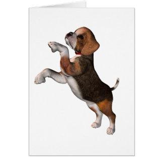 Playful Beagle Greeting Cards