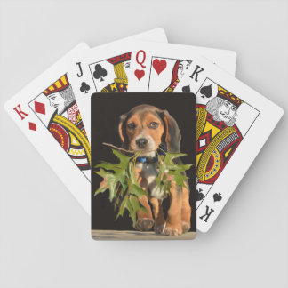 Playful Beagle Puppy With Leaves Playing Cards