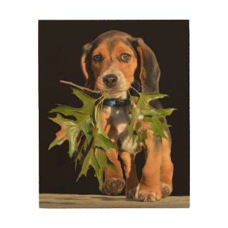 Playful Beagle Puppy With Leaves Wood Wall Decor