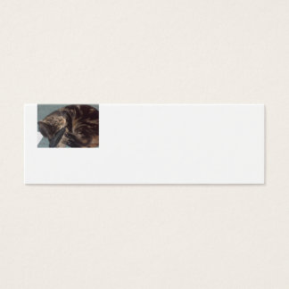 Playful Dave Skinny White Business Cards (20 Pack)