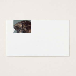 Playful Dave Standard Bussiness Cards (100 pack)