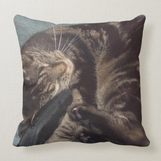 Playful Dave Throw Pillow