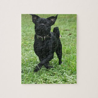 Playful Dog Jigsaw Puzzle