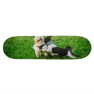 Playful dogs skate deck