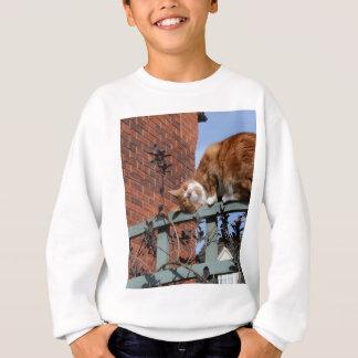 Playful Ginger Cat Sweatshirt