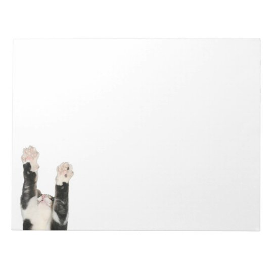 Playful kitty cat notepad