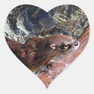 Playful Otter Heart Sticker