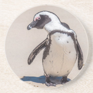 Playful Penguin Coaster