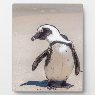 Playful Penguin Plaque