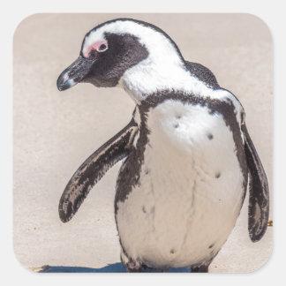 Playful Penguin Square Sticker