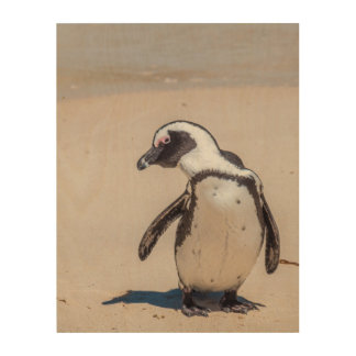 Playful Penguin Wood Wall Art Wood Print