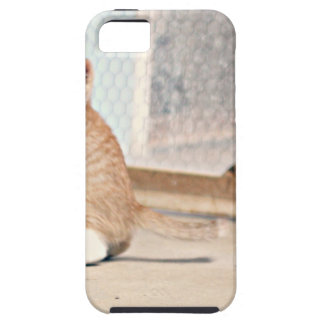 Playful Rocky Case For The iPhone 5